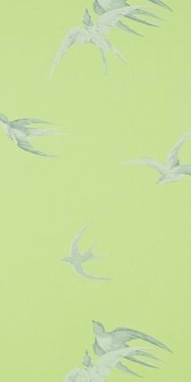 Swallows lime dviwsw101 vintage sanderson tapeter - Sanderson swallows wallpaper pebble ...